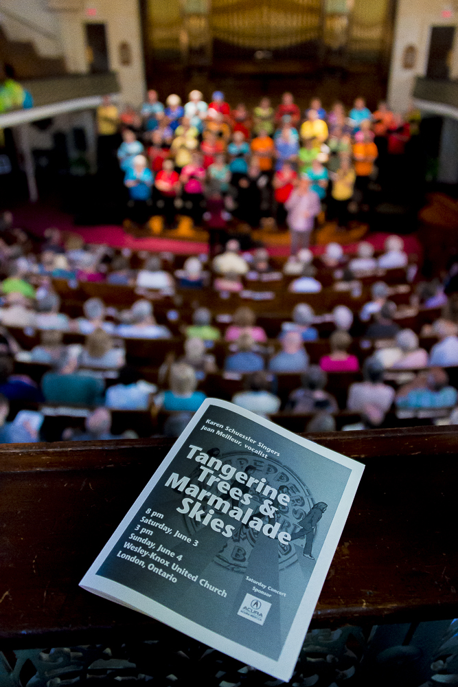 "Program cover for concert ""Gangerine Trees & Marmalade Skies"" in front of audience in distance (out of focus)"