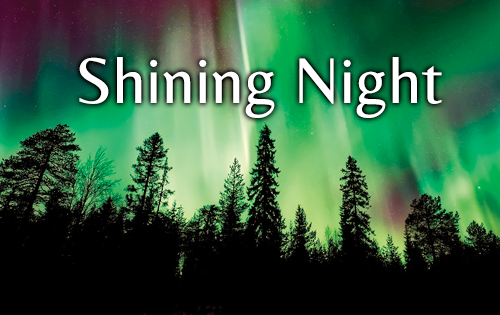 Shining Night - image of the northern lights